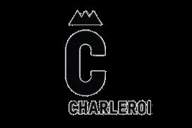 Logo ville de Charleroi